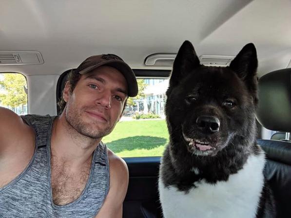 Henry Cavill e o cão Kal